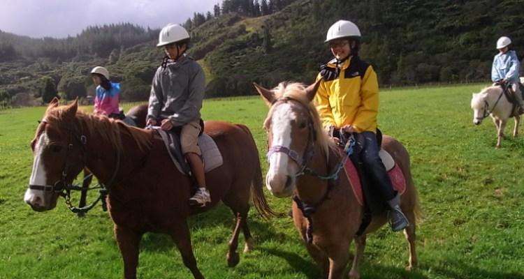 ニュージーランド、乗馬、アクティビティ、エバコナ