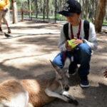 オーストラリア留学ツアーに参加をした山辺さんの体験談